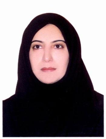 Mohammadian 2806d